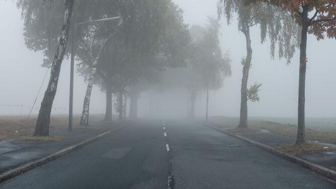 Mgła w Polsce. Ostrzeżenia IMGW w części kraju