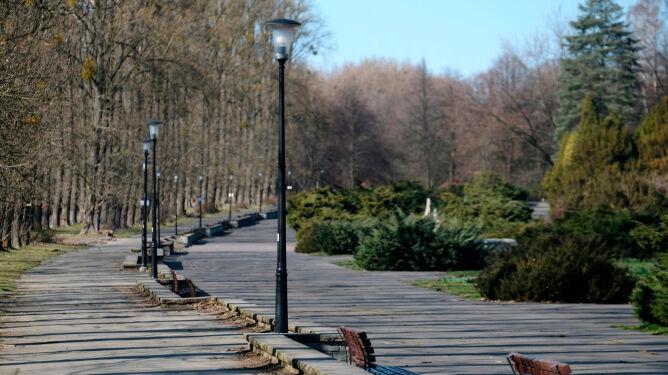 Koronawirus w Polsce. Czy można wyjść na spacer, pobiegać?