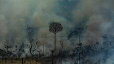Płonie Puszcza Amazońska (PAP/EPA/Victor Moriyama / Greenpeace Brazil HANDOUT)