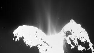 Czym pachnie warkocz komety? Zgniłymi jajami, końskimi odchodami i migdałami
