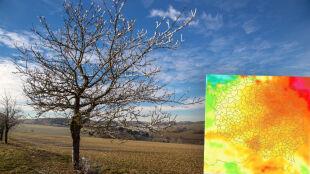 Jak będą wyglądać polskie zimy do 2100 roku? Projekcje klimatologów
