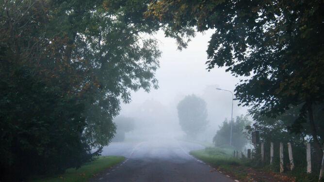 Rano mgły, później deszcz. <br />Utrudnienia na drogach