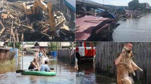 Woda opadła, służby zaczęły sprzątanie. Ogromne straty po powodzi na Syberii