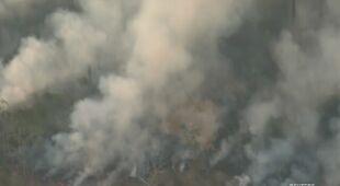 Płonie puszcza w Brazylii
